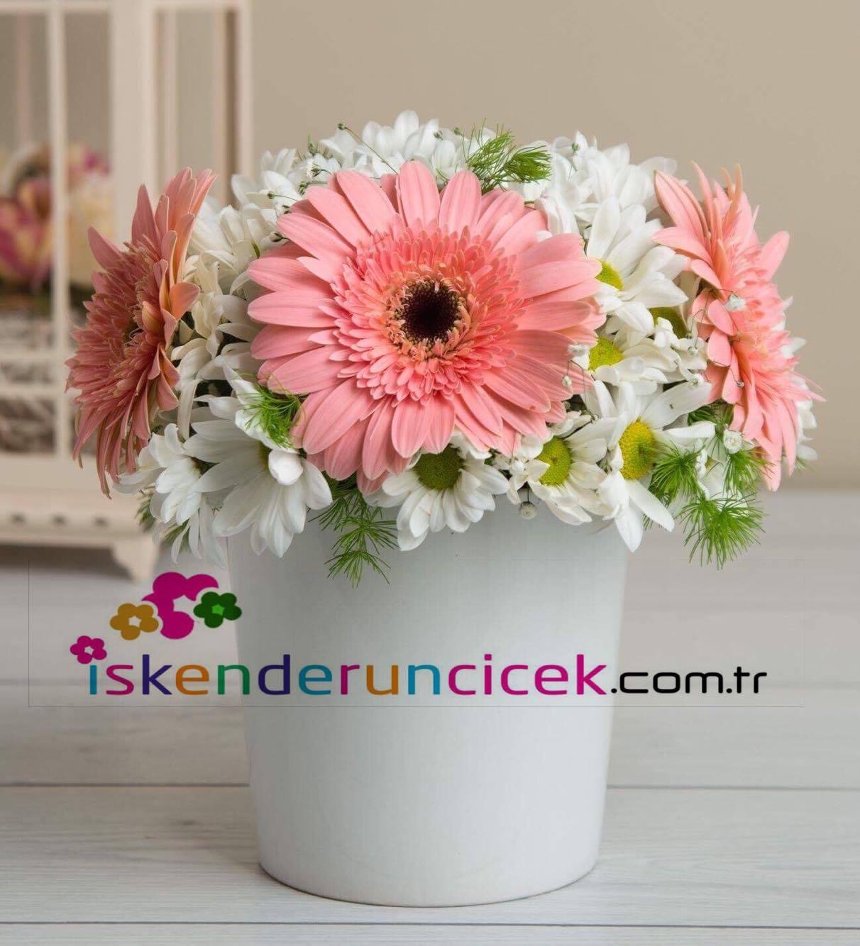 Seramik Vazoda Penbe Beyaz Çiçekler