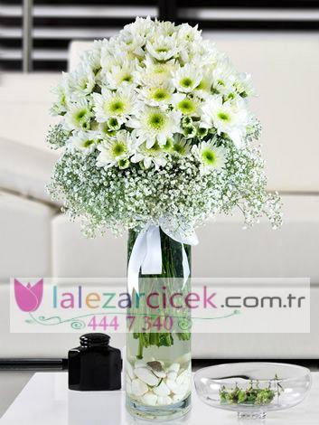 Vazoda Kýrzanten Çiçekleri